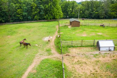 horse boarding facility in pa 01