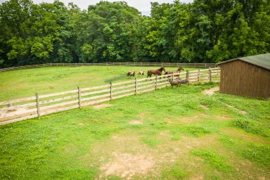 horse boarding facility in pa 03