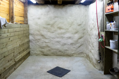 retired horse boarding farm shower