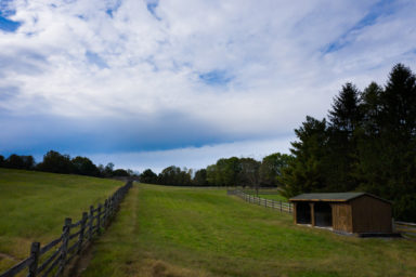 retired horse boarding farm with run-in sheds