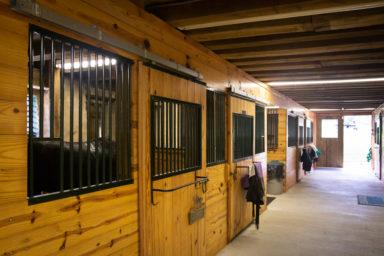 retired horse boarding farm